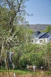 150420 HAB Housing Applewood 006