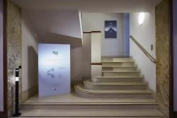 151111 Coffey Architects Exposure exhibition 056