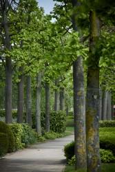 160513 Kajima Stockley Park 272