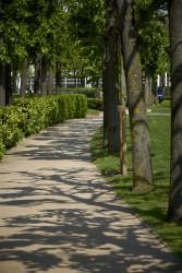160513 Kajima Stockley Park 295