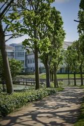 160513 Kajima Stockley Park 364