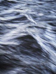 170620 River Leven 049
