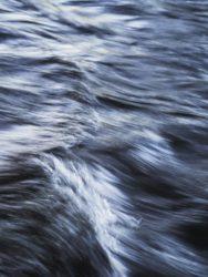 170620 River Leven 051
