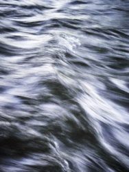 170620 River Leven 081