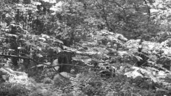 170827 Thetford Forest 122