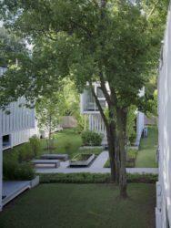 190617 AHMM Squirrel Park 4356