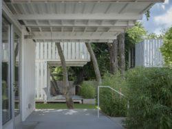 190617 AHMM Squirrel Park 4500