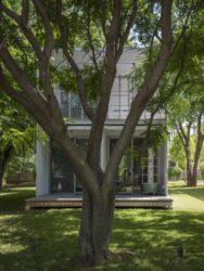 190618 Squirrel Park 4660