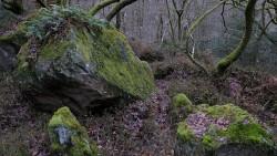 Low Wood 121121   16