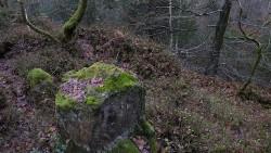Low Wood 121121   17