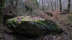 Low Wood 121121   8