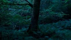 Low Wood 3 6