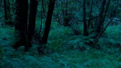 Low Wood 3 7