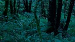 Low Wood 3 8